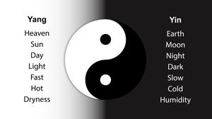 Understanding Qi in Chinese Medicine