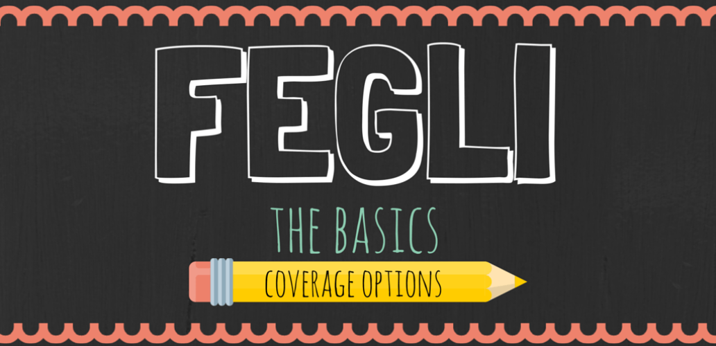 FEGLI: The Basics – Coverage Options