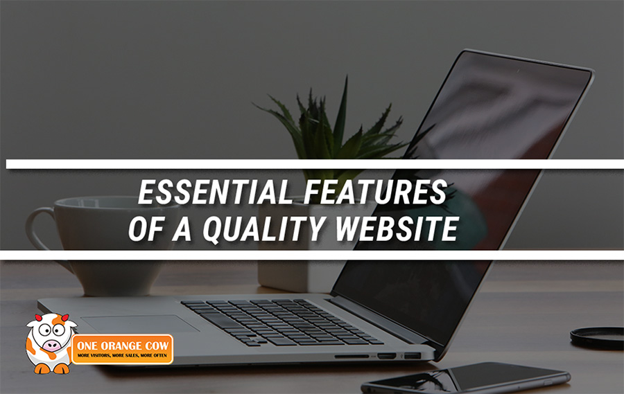 Essential Features of a Quality Website