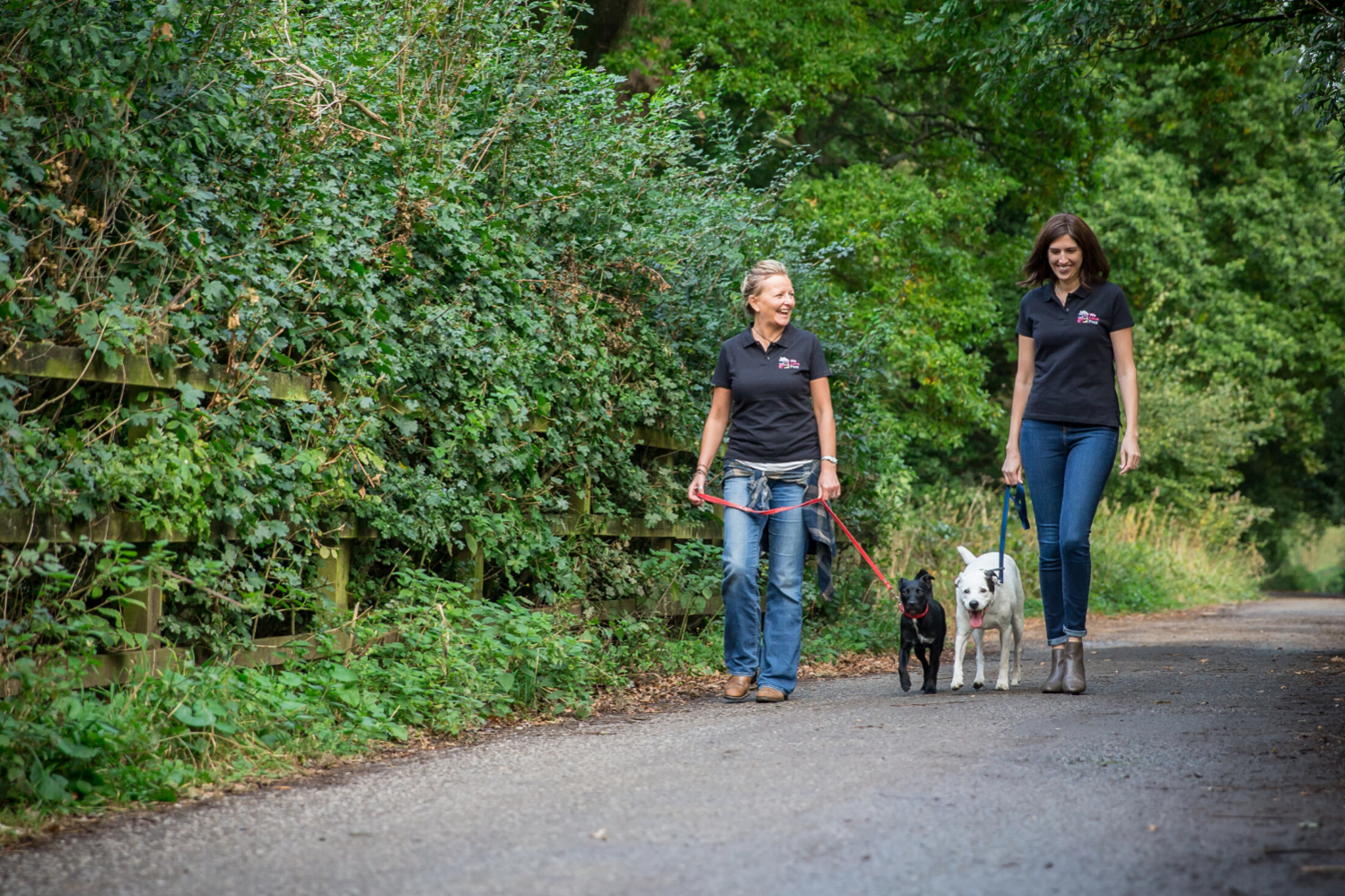 Professional and loving pet care in Aldershot