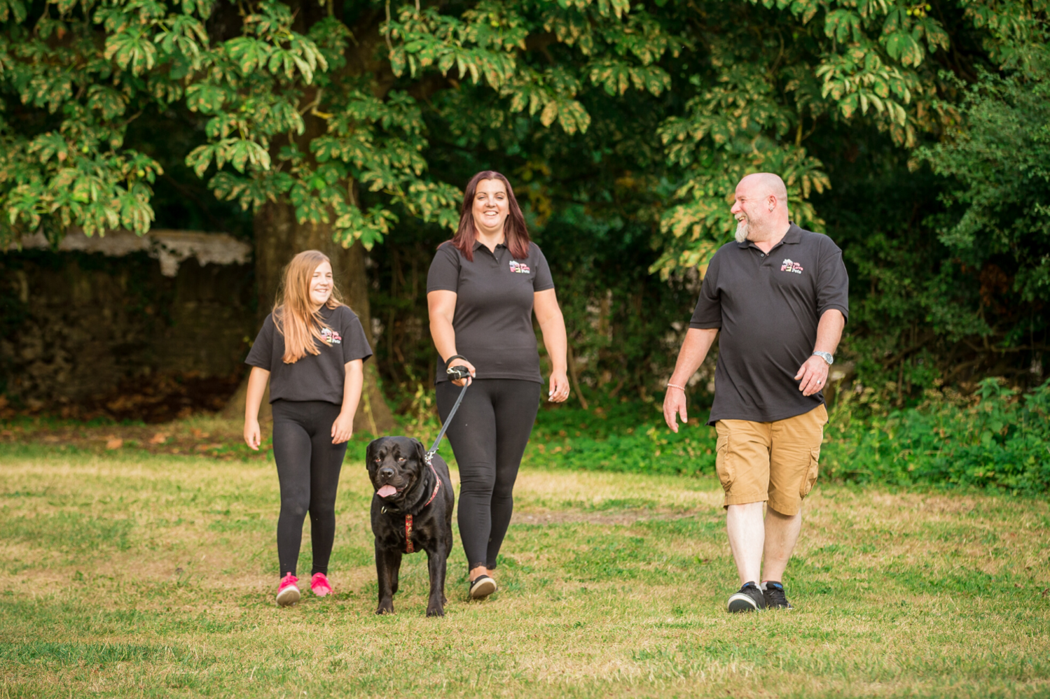 5 star licensed and fully insured dog walking and pet sitting in Bradford-on-Avon