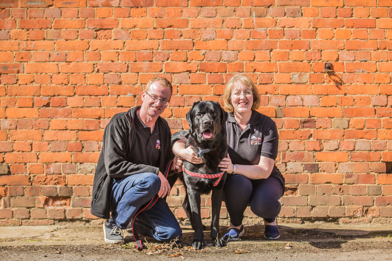 Insured and reliable dog walking and pet sitting in Grantham