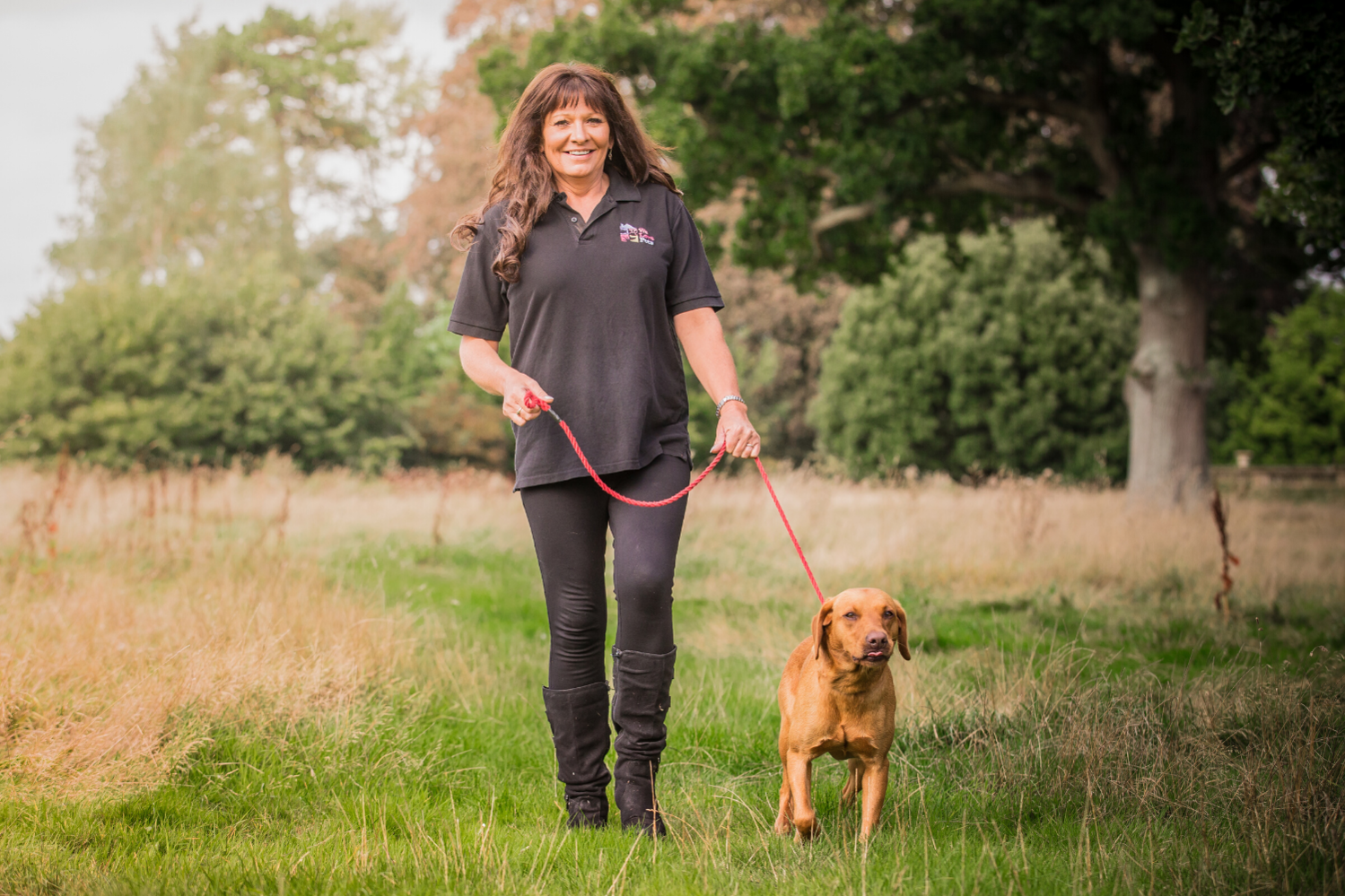 Dog walkers and pet sitters for Newport. Multi award winning We Love Pets.