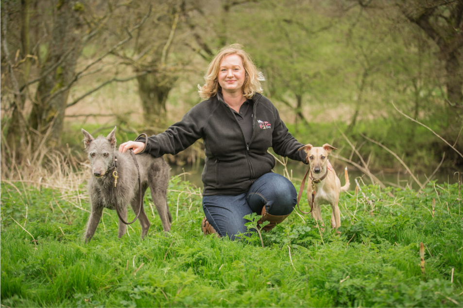 Dog walking and pet sitting in Marlow. Multi award winning pet care from We Love Pets.