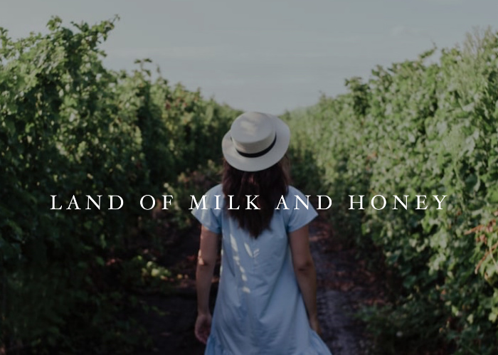 Land of Milk & Honey | March Monthly Blog