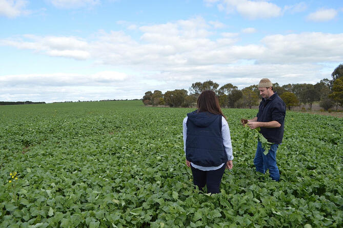 Skermer Farm and Mulcahy & Co - Strong partnerships for business growth