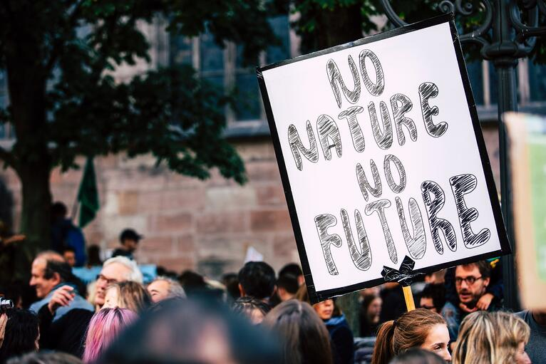 1% for the Planet network shows up big at the Global Climate Strike
