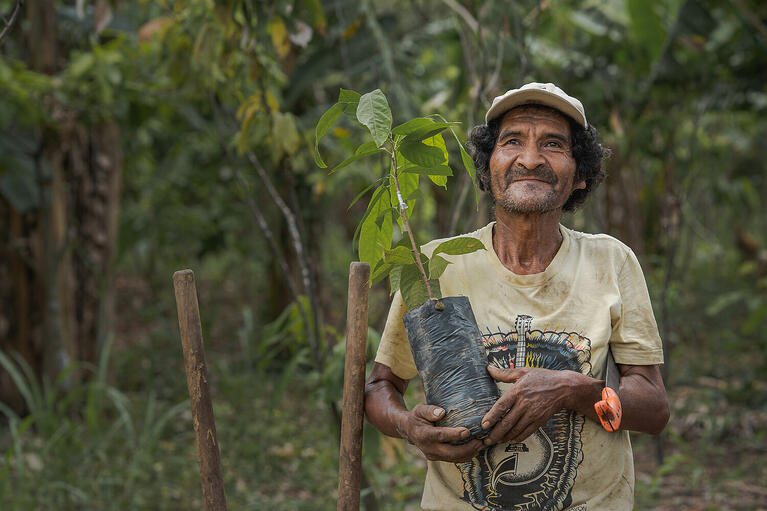 Nonprofit Changemaker of 2019: One Tree Planted