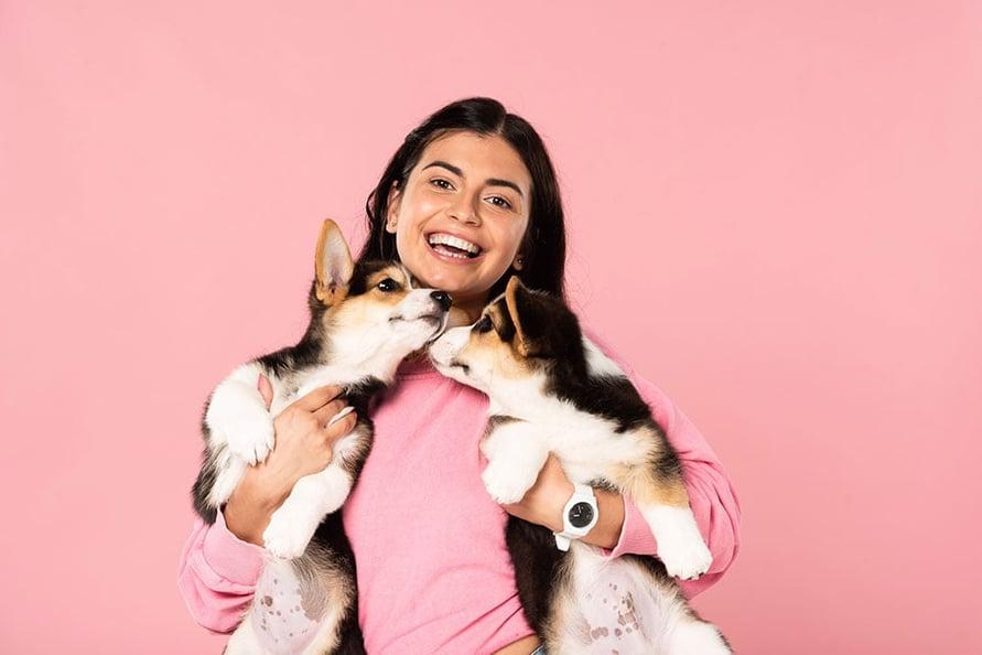 hond-puppy-verzekeren