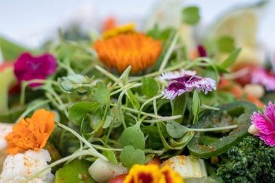 VMaple Serrano Vegetable Stir-Fry with Microgreens