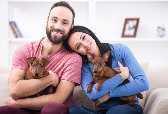 Screening Isn't Just for People: Pet Screening Protects Your Plano Rental Properties