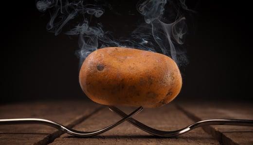 Strategische samenwerking met Hot Potatoes