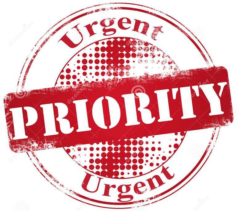 life priorities essay Perception and priorities what factors influences your listening perception and priorities what are the implications of those factors how can question techniques and nonverbal feedback improves the interactive process for a greater productivity.