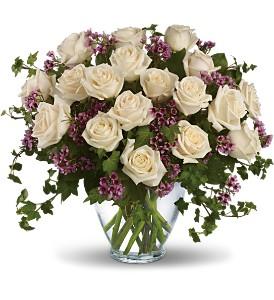 white_roses_in_boston-resized-600.jpg
