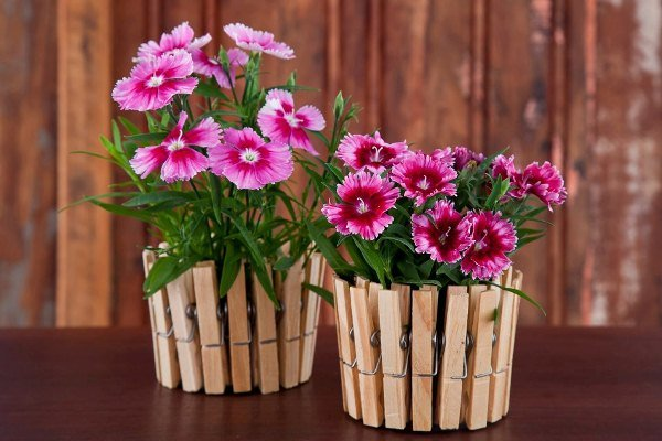 Clothespin-transformed-into-flowers-vases.jpg