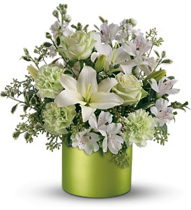 Saint Patricks Day from Boston Florist