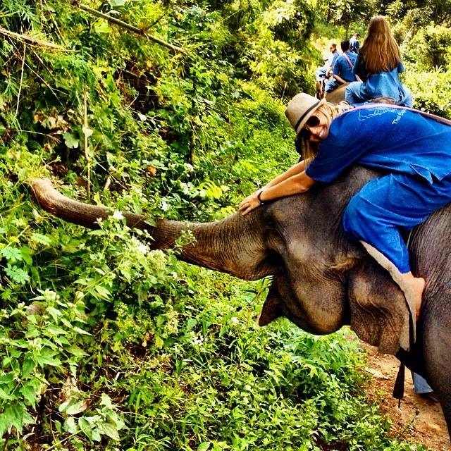 Thailand-chiang-mai-riding-elephant-Amelia-Rose-web