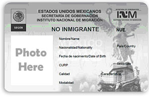 mexico visa for teaching English in Mexico