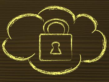 Should your Company Trust the Public Cloud?