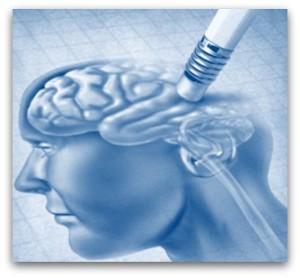wat zorgt voor gezonde hersenen?