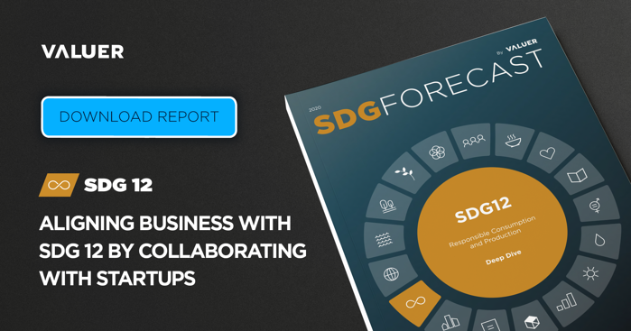 Aligning Business With SDG 12 by Collaborating With Startups