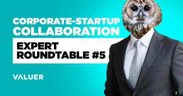 Corporate-Startup Collaboration: Expert Roundtable #5