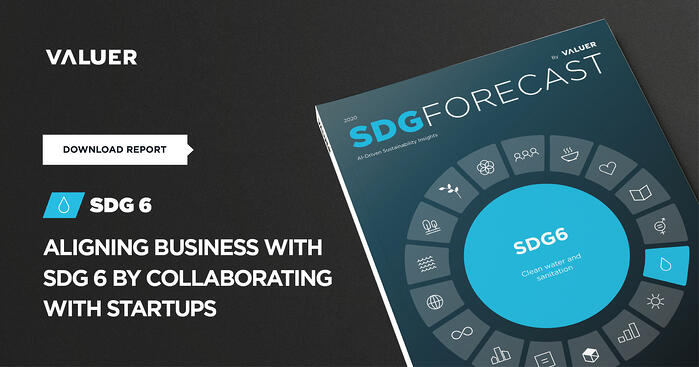 Aligning Business With SDG 6 by Collaborating With Startups