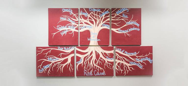 Functional Medicine: The Basics of Good Health