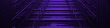 robert-v-ruggiero-1191381-unsplash_purple-1-1