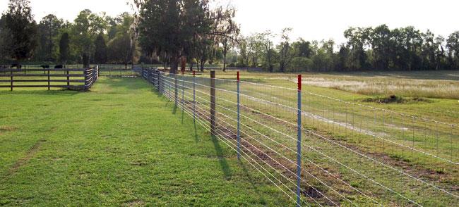 affordable fencing