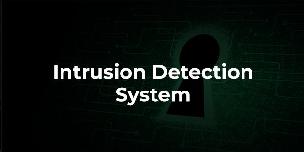 Intrusion Detection System: l'importanza del monitoraggio continuo