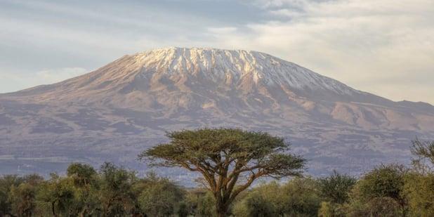 Environmental Leadership: Outdoor Afro Elevates Wildnote App