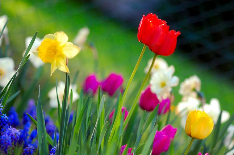 servicevirtualization_testenvironments_spring