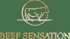 bs_logo_os_goldverlauf_rz.png