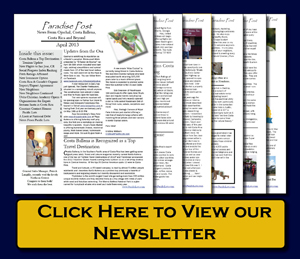 Paradise Post Newsletter April 2013