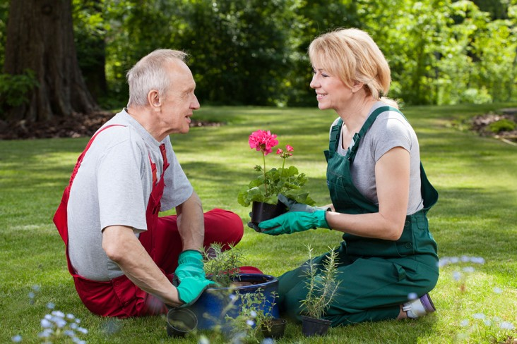 The Dangers of Knee Replacement Surgery