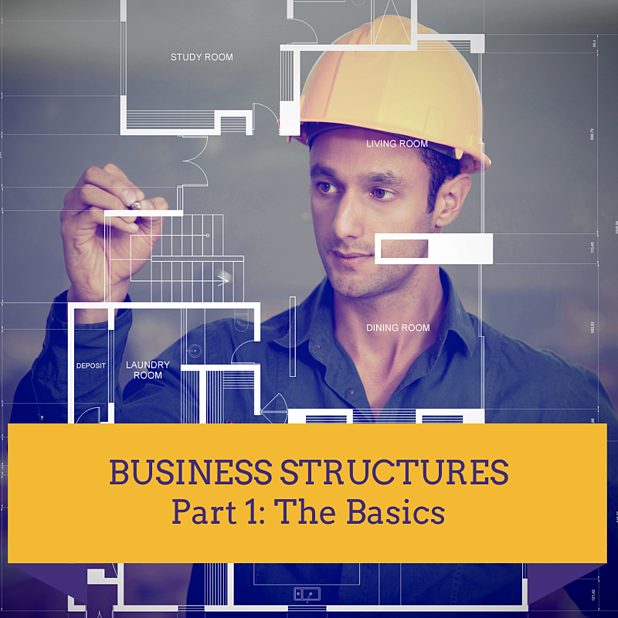 Business Structures Made Easy! Part 1: The Basics