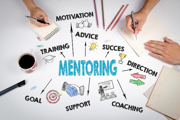 How Mentoring Can Grow Your Company?