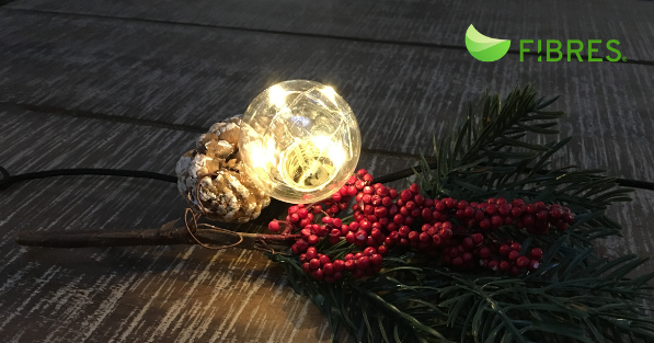 Holiday Greetings from Team FIBRES!