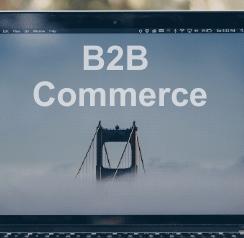 b2b digitization