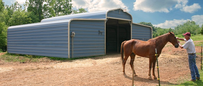 A blue lean-to metal carport serving as a horse barn. A man pets a chestnut horse in front of it.