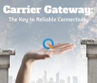 Carrier Gateway the key to reliable connectivity