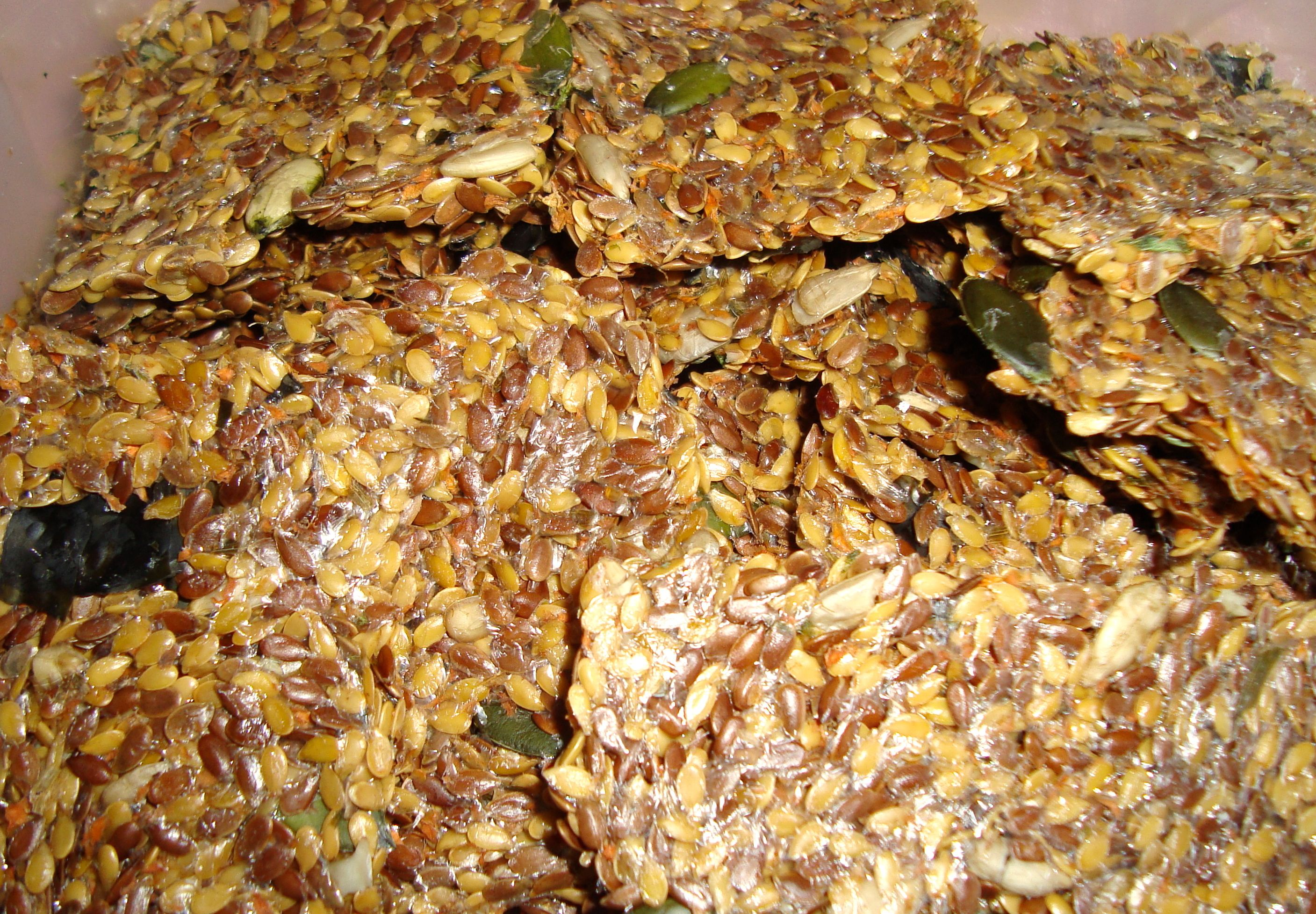 flak seed chips