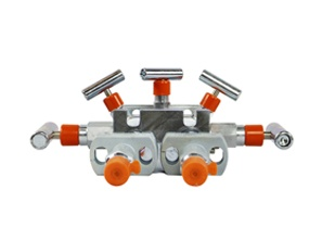 Manifold and Stabilizer
