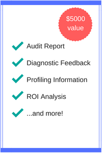 Audit ReportDiagnostic FeedbackProfiling InformationROI Analysis...and more!