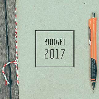 2017 budget.jpg