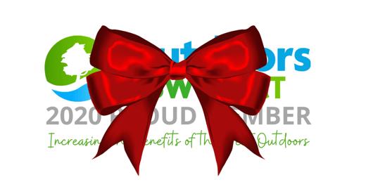 Copy of Copy of Board Member Logo