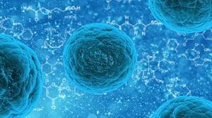 SARS coronavirus nucleocapsid protein monoclonal antibodies developed using a prokaryotic expressed protein.