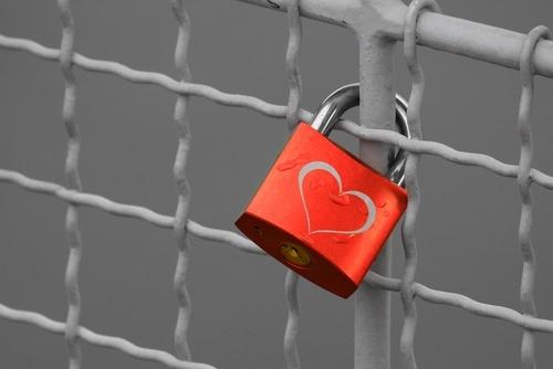 Setting Up SSL Certificates for HubSpot and WordPress Websites