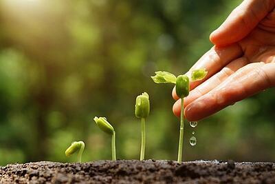 Measuring Your Lead Nurturing Campaign's Success